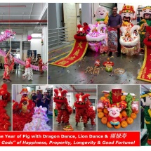 CNY 2019 Office Celebration